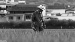 chinese countryside villager